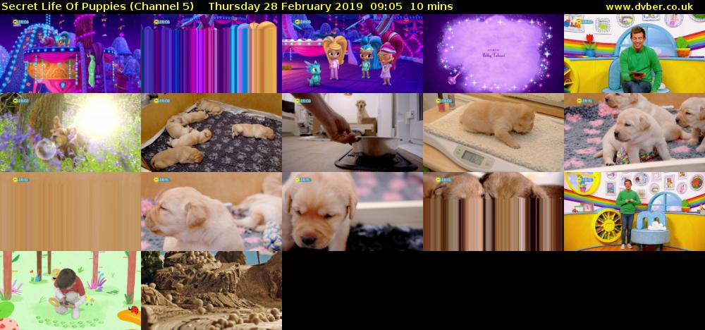 Secret Life Of Puppies (Channel 5) Thursday 28 February 2019 09:05 - 09:15