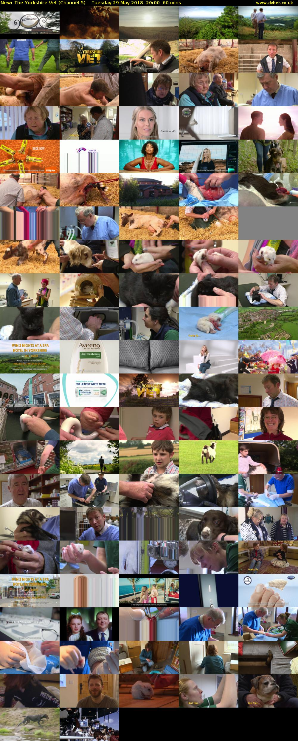 The Yorkshire Vet (Channel 5) Tuesday 29 May 2018 20:00 - 21:00
