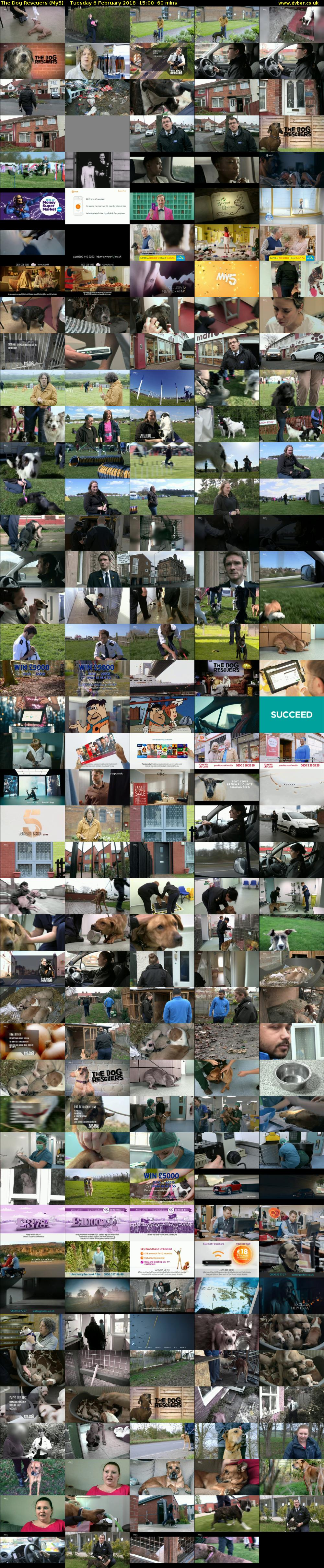 The Dog Rescuers (My5) Tuesday 6 February 2018 15:00 - 16:00