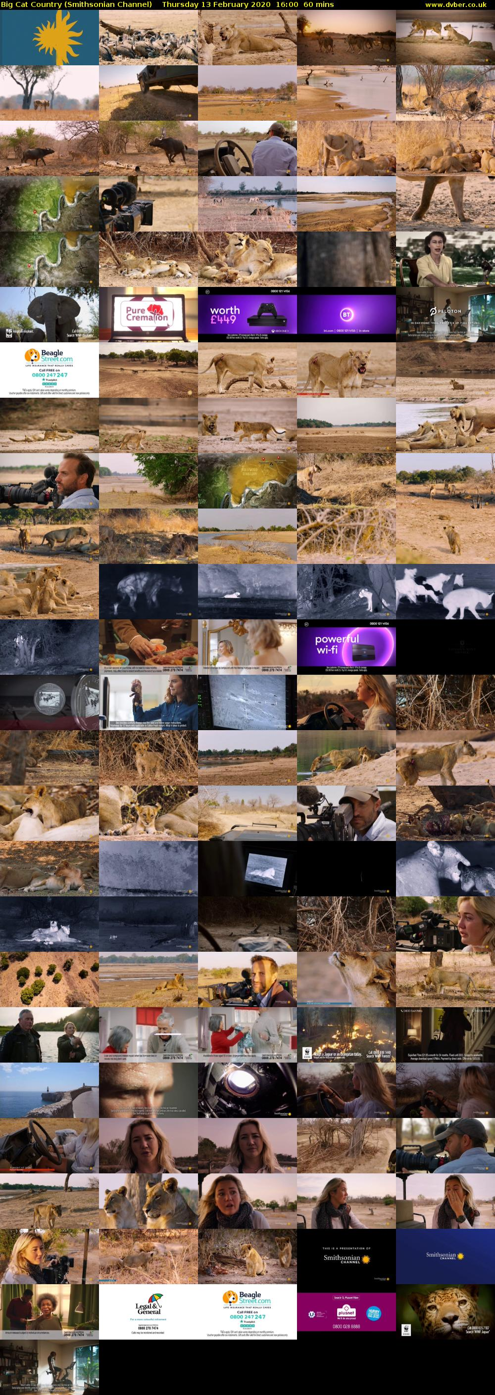 Big Cat Country (Smithsonian Channel) Thursday 13 February 2020 16:00 - 17:00